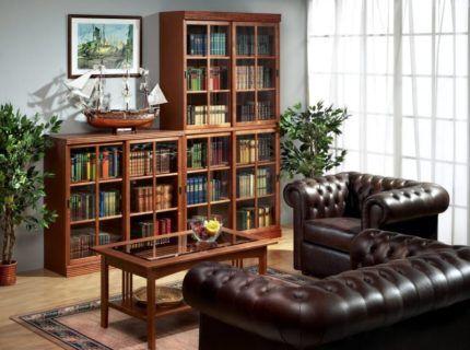 Домашняя библиотека с книжным шкафом