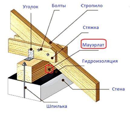 Схематическое изображение мауэрлата