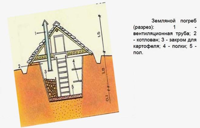 Схема земляного погреба в разрезе